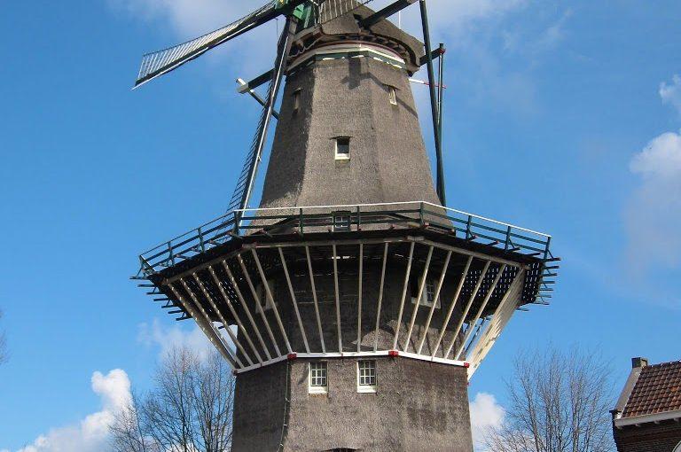 Amsterdam: top e flop